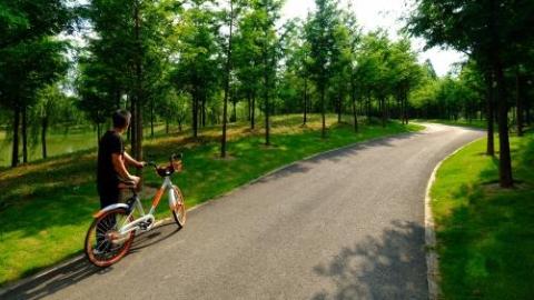 今年上海建成224公里绿道 绿道总量达671公里