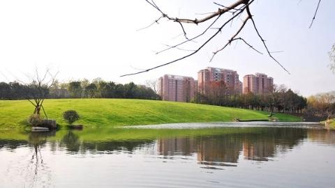 上海宝山区新年新增三块生态休闲绿地