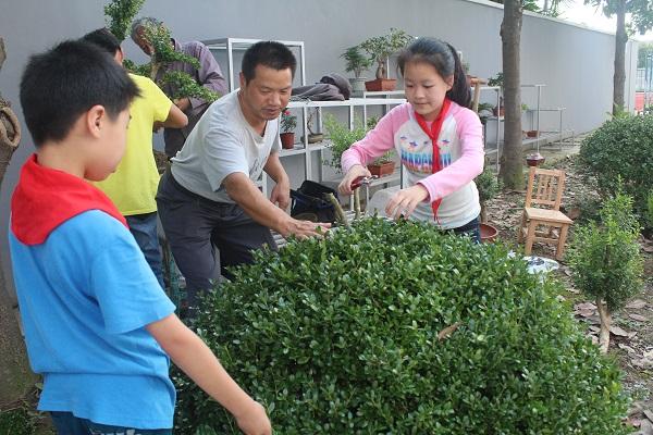 合兴中学学生在老师指导下,学习黄杨树造型技能(校方供图).JPG