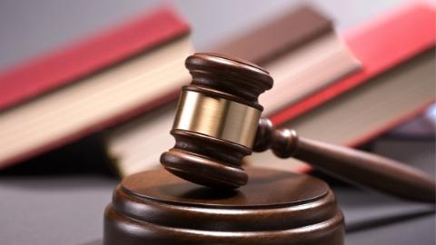 上海首例走私鱼鳔案落槌定案 两人走私价值220余万元货物获刑