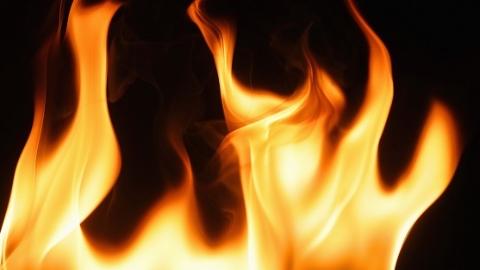 浦东新区莲园路一居民楼突发大火 未造成人员伤亡