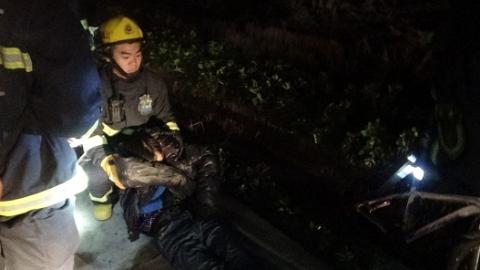 金山区一醉汉深夜跌落排水沟 消防队员紧急救援
