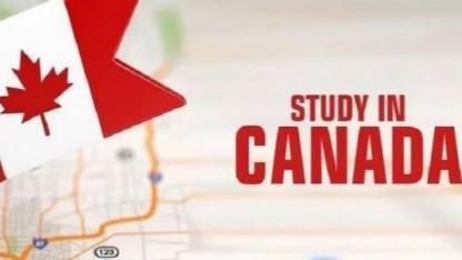 留学与移民   留学生随意转学或面临留学签取消