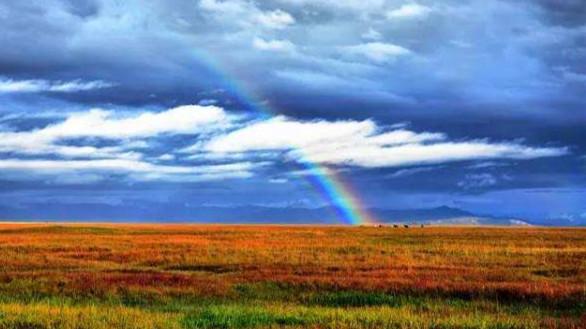 新疆,我梦牵魂绕的大美之地