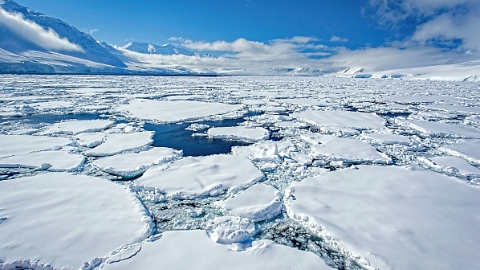 美研究显示:南极冰川融化速度是80年代6倍