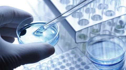 民盟市委建言:建设高等级生物安全实验平台 提高风险抵御能力