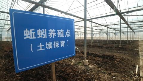 """吃浦东放心农产品,认准首批""""安全牌"""""""