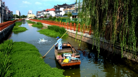 两会声音|申城水环境该如何治理?邮轮游安全怎么保障?代表委员们这么说