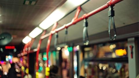 南汇公交调配春节运能 重点保障一条夜宵线和三座游乐园