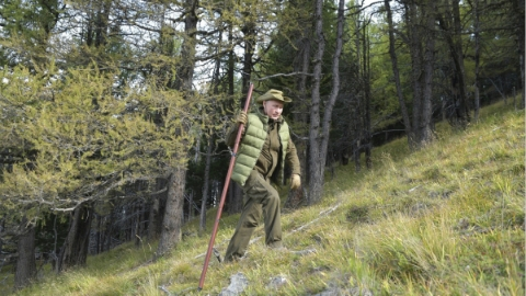 普京过67岁生日:深入原始森林 搜寻野生蘑菇