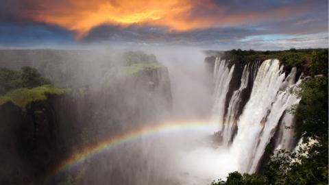 非洲地区唯一主宾国赞比亚:12家公司将参加第二届进博会