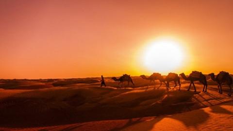 免签的突尼斯,比摩洛哥更小众,却同样炫彩夺目