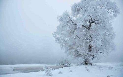 晨读 | 立冬情缘