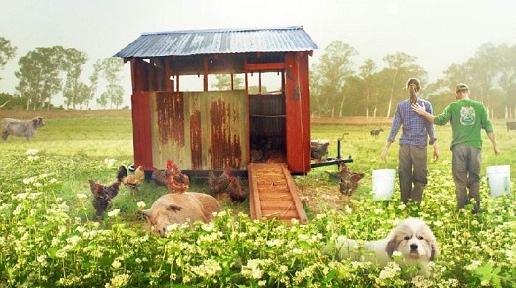 读碟 | 最大的小小农场