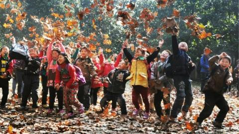 教育新观察 | 给中小学生放几天秋假,如何?
