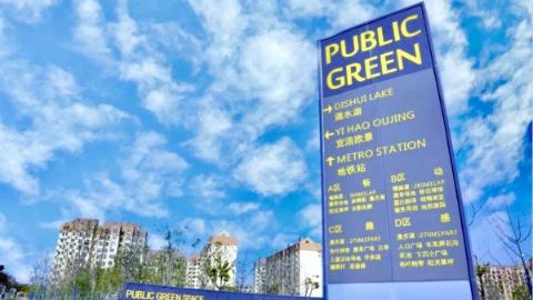 临港新添公共绿地,家门口就有天然氧吧!