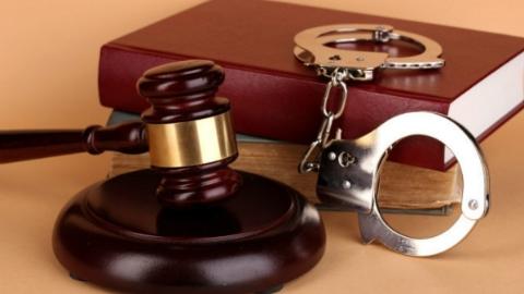 假冒进博会参展商注册商标 5名犯罪嫌疑人被批捕