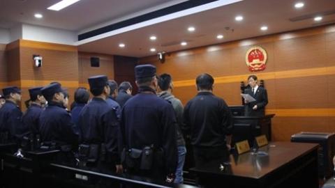 宝山区法院周末开展集中执行  执行到位125万元 司法拘留8人