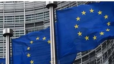 """管理不善 欧盟吁取消""""黄金签证"""""""