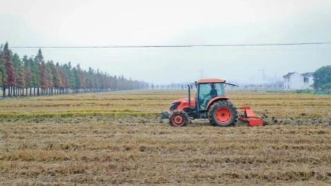 秋收量质齐升,是什么让农机在松江田头撒了欢似地干?