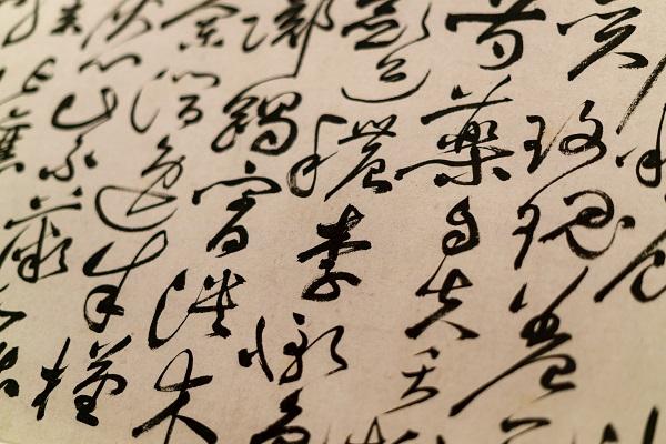 《语言文字周报》执行主编杨林成:认读繁体字,主要是少数专家的事