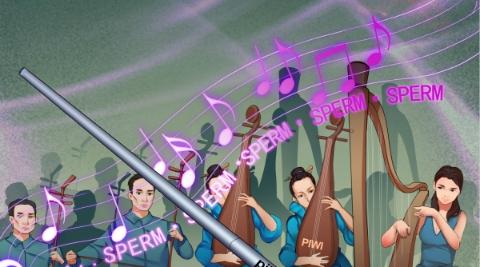 上海科学家发现精子发育过程中蛋白质翻译激活的重要机制