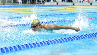 与奥运冠军同乐,2019年全国游泳城市系列赛(上海站)总决赛举行