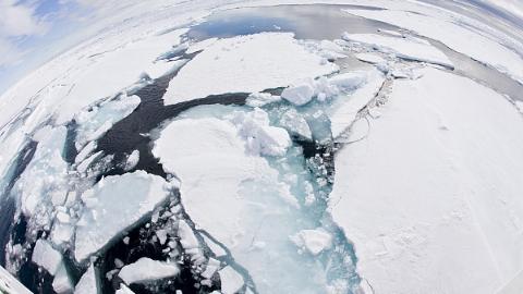 美国何以出现严寒极端天气?元凶仍是全球变暖