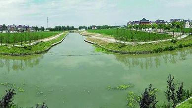 诗意沪乡 | 宝山塘湾村:河道纵横绿水依,鱼肥蟹美稻米香