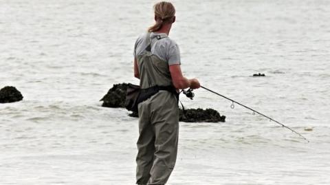 钓鱼被抓 采蘑菇被罚 捞个鲍鱼还入狱?!先看看这些国家的法律是怎么说的