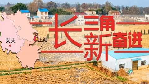 长三角新奋进|粮仓老字号 绿色新科技 安庆:农业大市保留传统风味追求环保革新