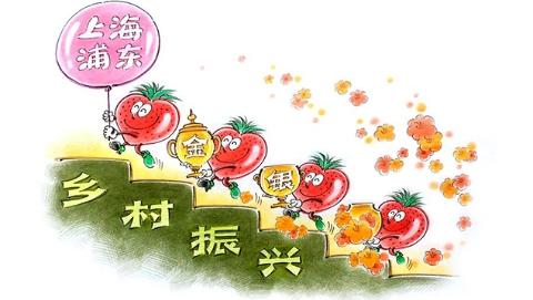 独家述评|金奖草莓解码乡村振兴
