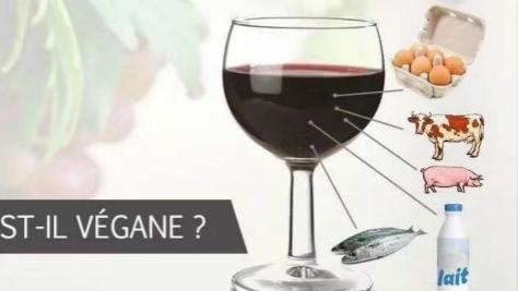 连酒也要分荤素?你喝的葡萄酒可能有鱼猪牛...