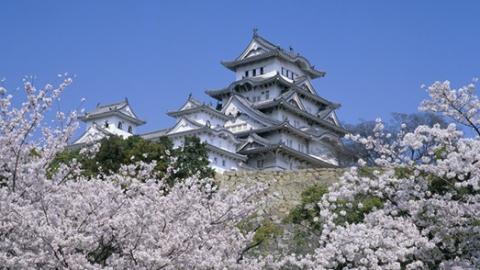 惠游 | 日本赏樱小众景点有哪些?