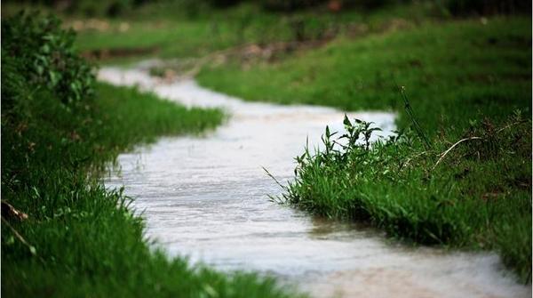 蹚在寂寞的河里