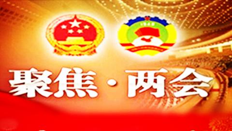 海外看两会   中国国际文化传播中心认真学习总书记看望文艺界社科界委员时的重要讲话