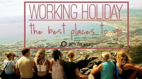 想在新西兰打工度假?现实不一定那么美好!
