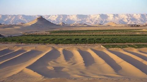 他们在沙漠里种出一片绿洲 上海交大公益团科技治沙防沙