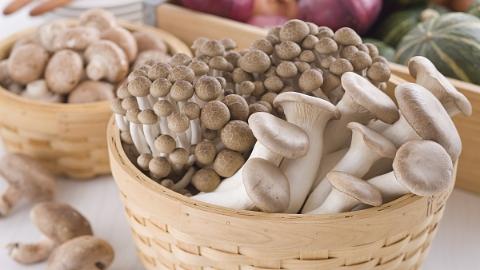 每周吃300克蘑菇 可减半大脑衰退痴呆风险