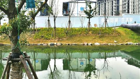 """劣V类水体已下降到18% 上海今年将推广""""河道警长""""与""""生态检察官"""""""