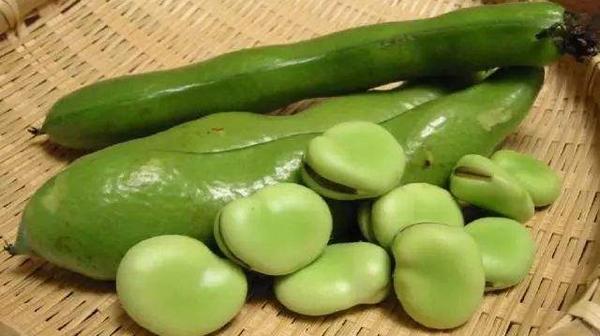 吃蚕豆的季节