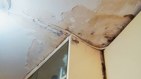 厨房渗水两年 老人无辜受累