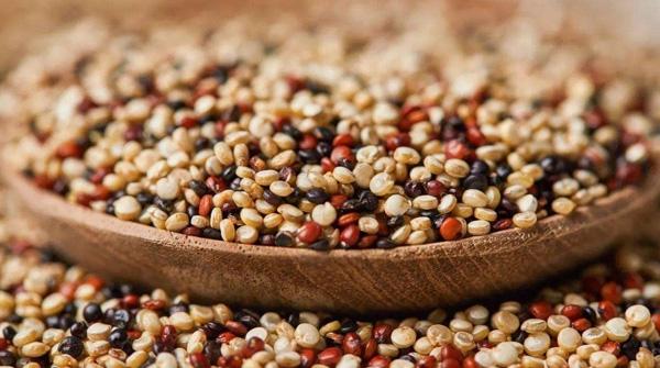 玻利维亚邂逅藜麦