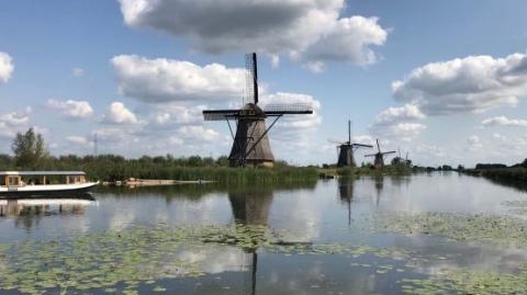 又热又堵,荷兰风车村跪求游客别来了