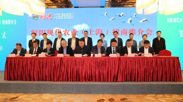 总投资36.82亿元 射阳20个农业项目在沪签约