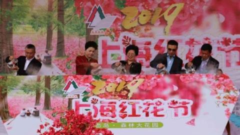 花香溢森林 上海红花节在东平国家森林公园开幕