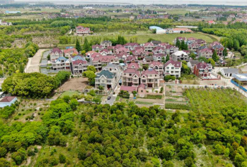 """罗泾塘湾村美丽乡村""""再升级"""",打造国内首个母亲花文化园"""