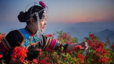 七夕会·旅游   三月三在畲族过节