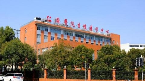 基因正常而表观遗传异常?上海专家最新成果有望阻断母亲基因功能改变所致的罕见病