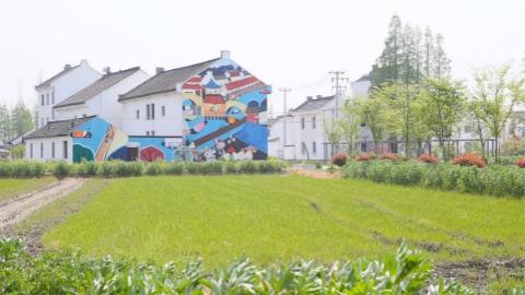 """引入物联网 建""""沪上粮仓"""" 松江区实施农业综合开发硕果累累"""